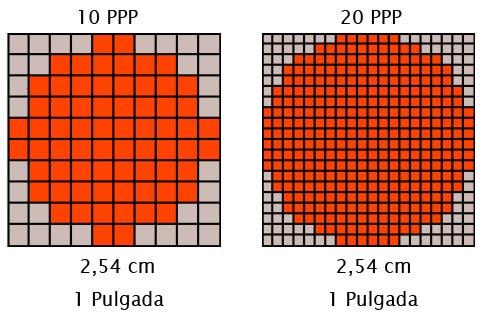 diferencias entre 10 y 20ppp